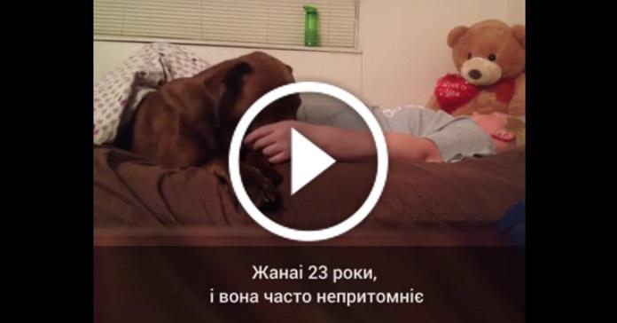 Собака Кольт піклується про свою господиню Жанаі, яка часто непритомніє
