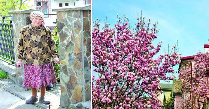 Знай наших: Жінка, яка перетворила звичайну чернівецьку вулицю у квітучу алею