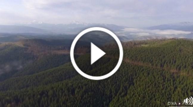 """""""Там, де народжуються хмари"""" – дивовижна відео-історія про українські Карпати"""