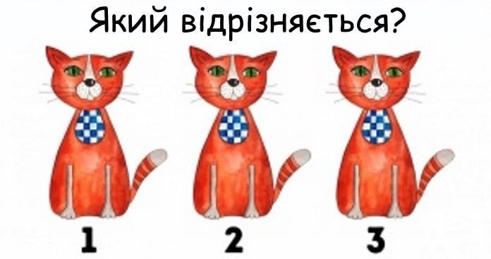 Лише одиниці можуть побачити усі відмінності (15 картинок). Перевірте себе
