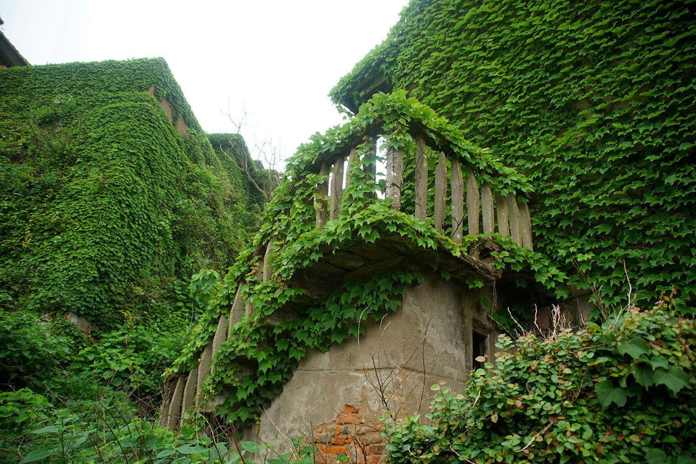 living-ruins-in-shengshan-gessato-6