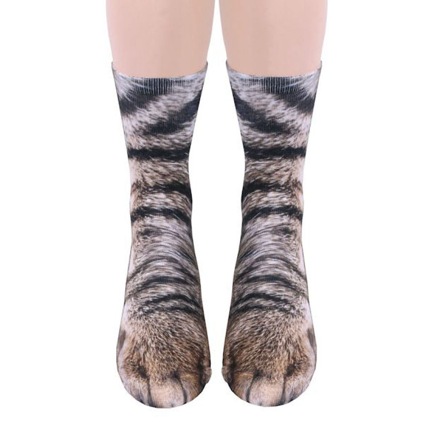 socks-animal-paws-4-593e8821e74d5__880