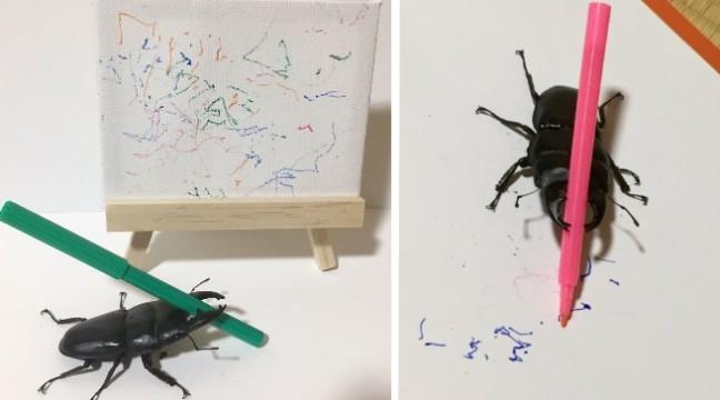 В Японії живе жук Спайк, який підкорює Твіттер своїми картинами