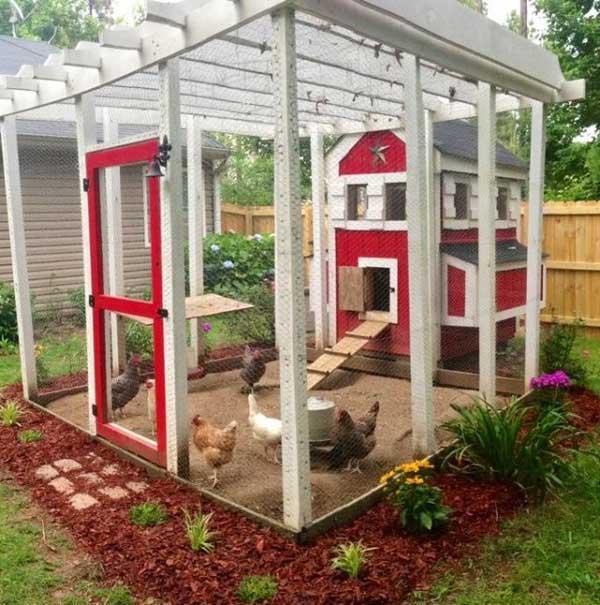 chicken-coop (11)