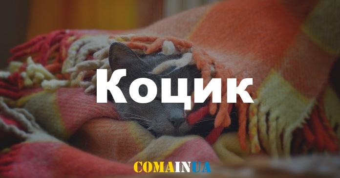 10 затишних українських слів, які пасують осені
