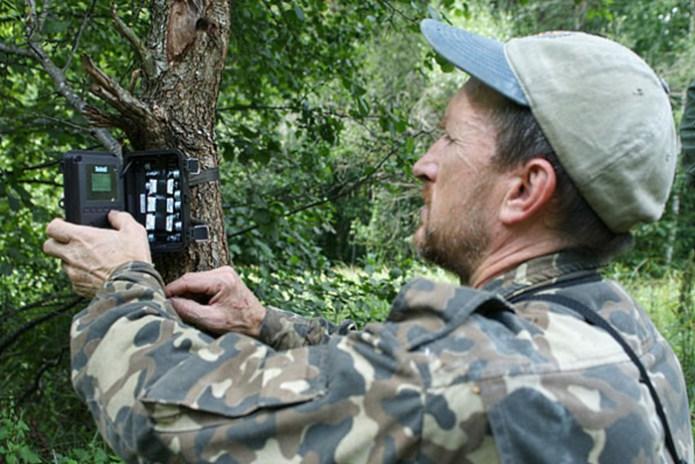 Чоловік встановив фотопастки біля Чорнобиля. Те, що зняла камера, не піддається жодному опису