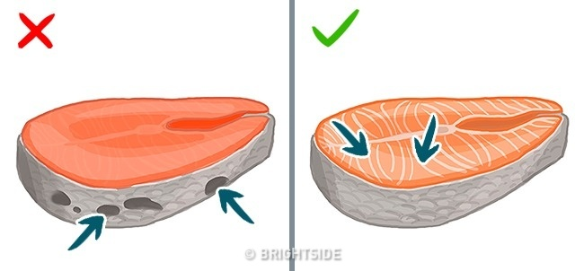 Це потрібно знати. Популярні видів риби, які приносять скоріш шкоду, ніж користь, фото-13